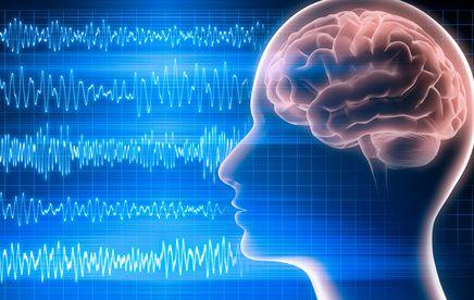 dd2714e28acb2dc9a1d0551c2d4a8b8c--brain-science-life-